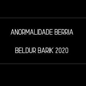 ANORMALIDADE BERRIA